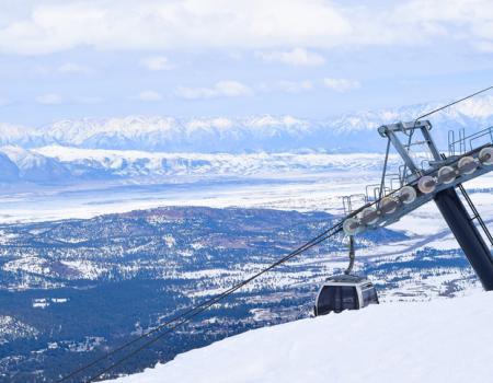Scenic Gondola Ride