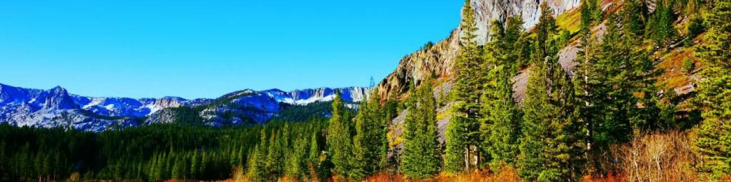 Fall colors in Mammoth Lakes, CA
