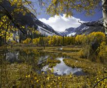 A view outside of Mammoth, CA during the fall season