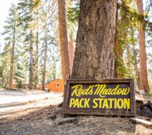 Red'a Meadow sign by a big tree